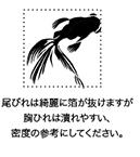 Photo_20210620130601
